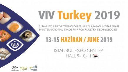 VIV TURQUIA 2019, ISTAMBUL