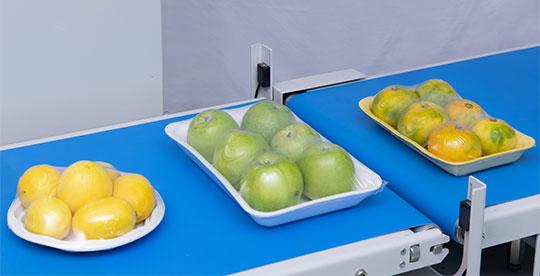 meyve-paketleme-makinesi