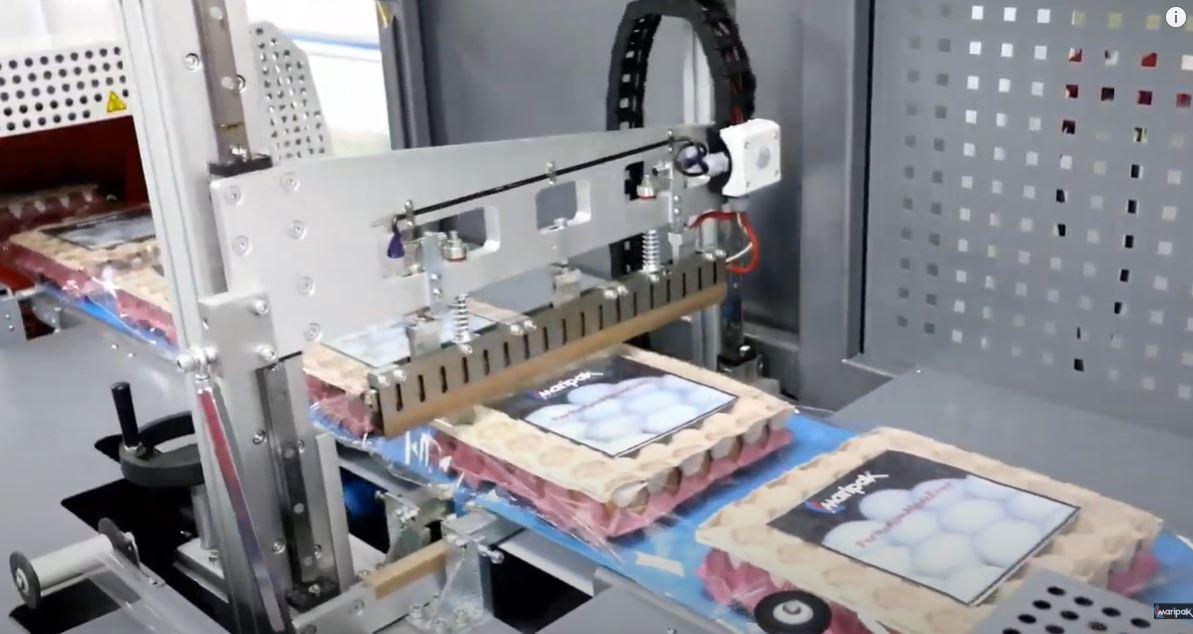 Otomatik Yumurta Paketleme Makinası